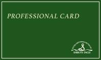 プロフェッショナルカード